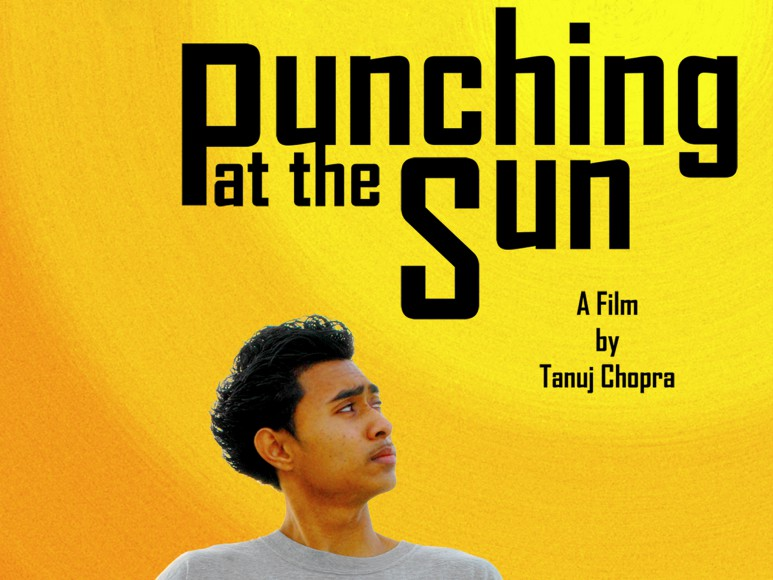 Punching at the Sun is a crackling, emotionally-charged dream ride through the streets of Elmhurst, Queens.  It is a tale of rage and redemption as seen through the fiery eyes of Mameet Nayak: a headstrong Indian teen lost in the shadow of his brother's death.